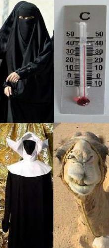 Burqa 2